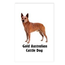 Gold Australian Cattle Dog Postcards (Package of 8