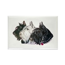 Scottish Terrier Trio Rectangle Magnet (100 pack)