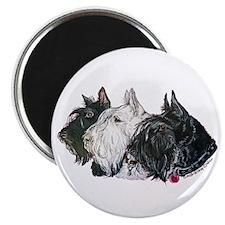 Scottish Terrier Trio Magnet