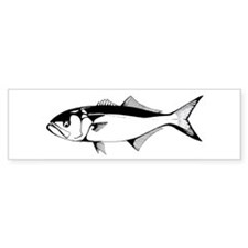 bluefish Bumper Bumper Bumper Sticker