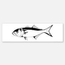bluefish Bumper Bumper Bumper Sticker
