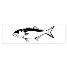 bluefish Bumper Bumper Sticker