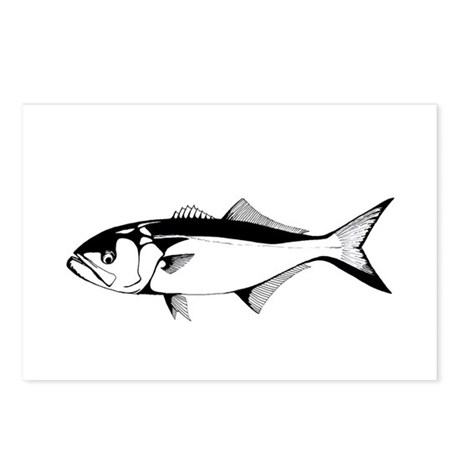 bluefish Postcards (Package of 8)