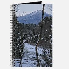Bridge To Lake Placid Journal