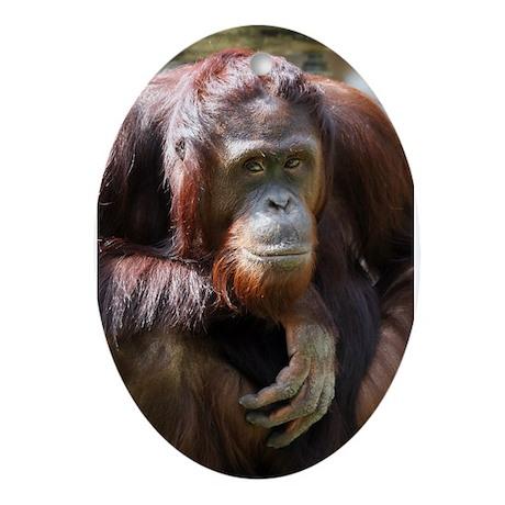 Orangutan Dad Oval Ornament