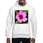 Glorious Violet Wood Sorrel Hooded Sweatshirt
