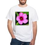 Glorious Violet Wood Sorrel White T-Shirt