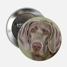 Weimeraner Button
