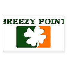 Breezy Point Irish (orange) Rectangle Decal