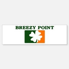Breezy Point Irish (orange) Bumper Bumper Bumper Sticker