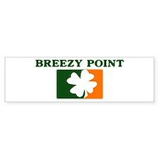 Breezy Point Irish (orange) Bumper Bumper Sticker