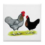 Black Sex-linked Chickens Tile Coaster