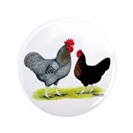 """Black Sex-linked Chickens 3.5"""" Button (100 pa"""