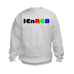 ICnRGB Sweatshirt