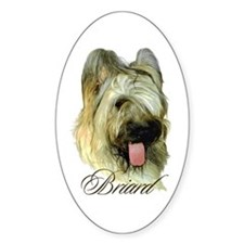 Briard Headstudy Oval Decal
