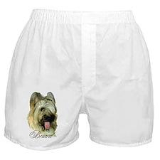 Briard Headstudy Boxer Shorts