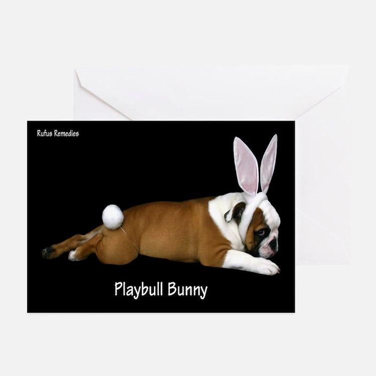 Playbull Bunny Greeting Cards (Pk of 20)