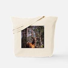 Blacktail Deer in Summer Tote Bag
