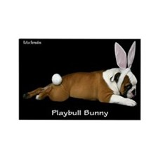 Playbull Bunny Rectangle Magnet