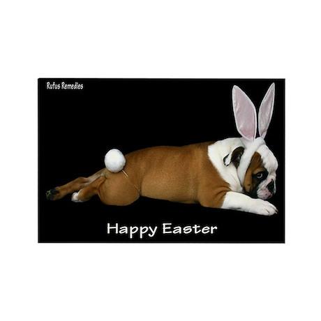 Happy Easter Bulldog Rectangle Magnet (10 pack)