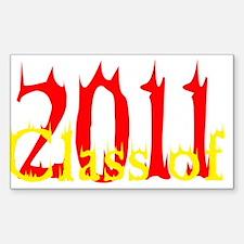 Hotness 2011 Rectangle Decal