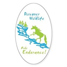 Endurance Horse Oval Decal
