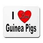 I Love Guinea Pigs Mousepad