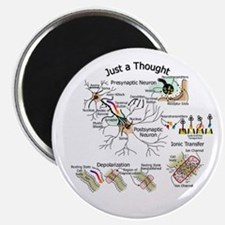 Neural Synapse Magnet