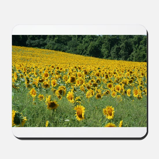 Field of Sunflowers 2 Mousepad