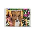 Basenji Art Rectangle Magnet (100 pack)