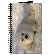 Cute Baby Seal Journal