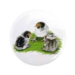 "Creme Brabanter Chicks 3.5"" Button"