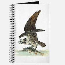 Osprey Bird Journal