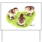 Silver Grey Dorking Chicks Yard Sign
