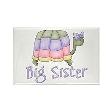 Pastel Turtle Big Sister Rectangle Magnet (100 pac