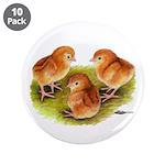 "Red Leghorn Chicks 3.5"" Button (10 pack)"