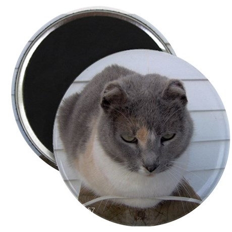 "Crunchy The Earlless Cat 2.25"" Magnet (100 pack)"