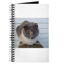 Crunchy The Earless Cat Journal