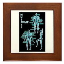 Muscle Chart Framed Tile
