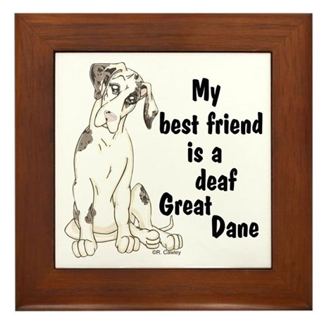 NMQN Deaf BFF Framed Tile