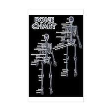 Bone Chart Rectangle Decal