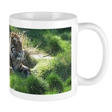 Helaine's Tiger Mug