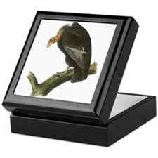 California Condor Keepsake Box