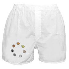 BEAR PRIDE BEAR PAWS/CIRCLE Boxer Shorts