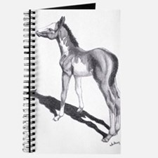 "Paint Foal ""Something in the Journal"