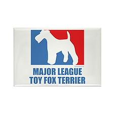 ML T.F.T. Rectangle Magnet (10 pack)
