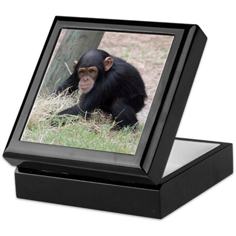Chimp baby Keepsake Box