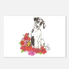 NH Spring Pup Postcards (Package of 8)