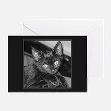 Cute Black Kitty Greeting Card