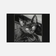 Cute Black Kitty Rectangle Magnet